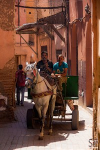 Warentransport in der Medina