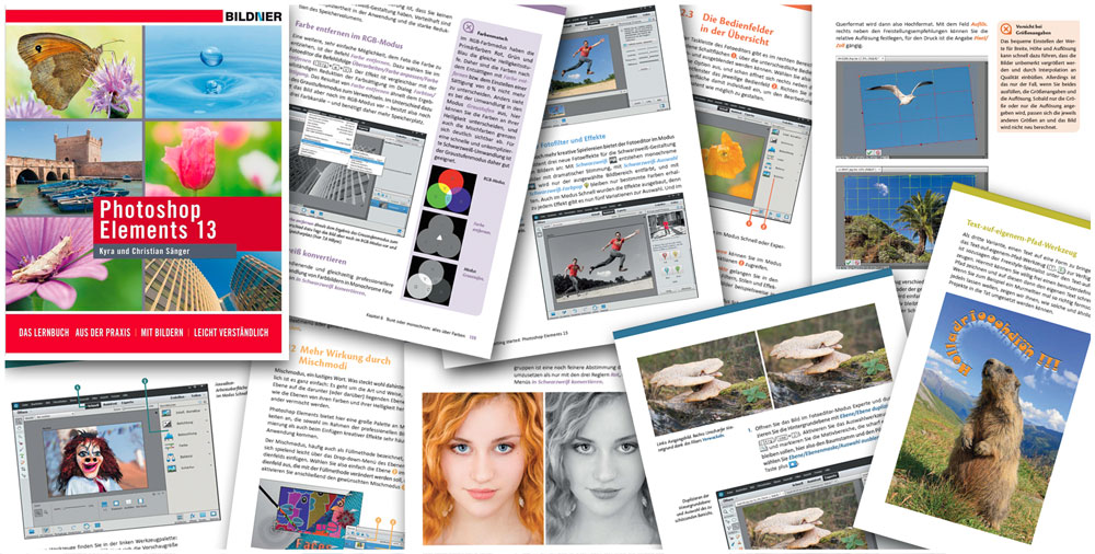 Photoshop Elements 13: Blick ins Buch